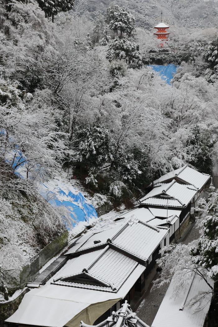 雪景色 2014 <清水寺>                        _f0021869_21521324.jpg