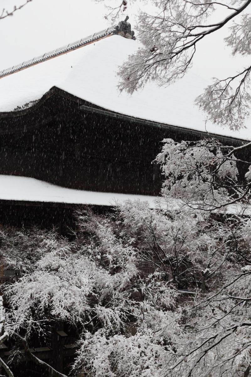 雪景色 2014 <清水寺>                        _f0021869_2152494.jpg