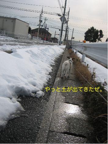 c0179472_16205946.jpg