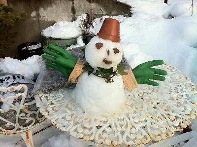 雪はごめんなさいです。_a0134296_001564.jpg