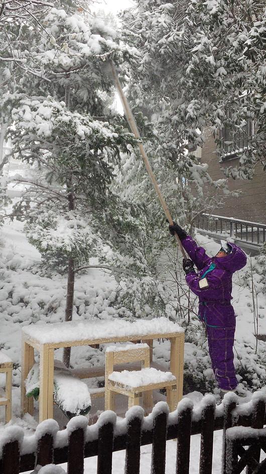 雪の日いろいろ_b0171098_9464861.jpg