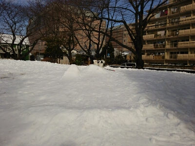 雪とおぼーちゃま達色が違いすぎますよっと。_a0155999_1411145.jpg