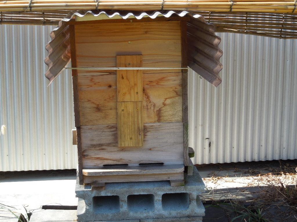 「今日のミツバチ 140210」_a0120513_18373921.jpg