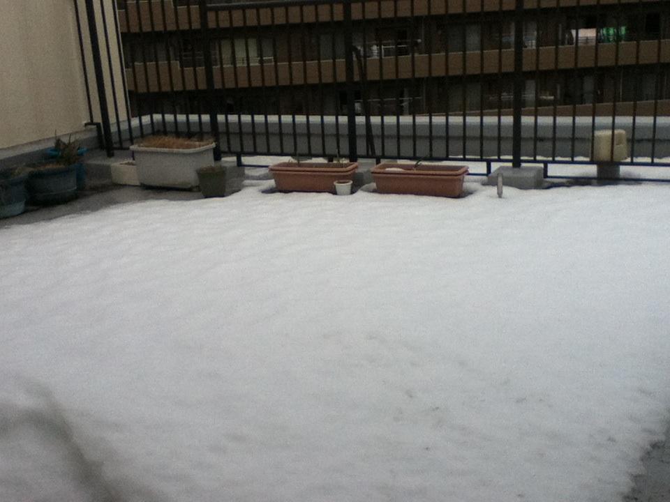 まるで雪国みたいな休日_b0255217_17194437.jpg