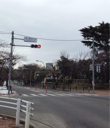『鬼あし一門会 観光RUN』に参加しました〜☆_b0203925_21325367.jpg