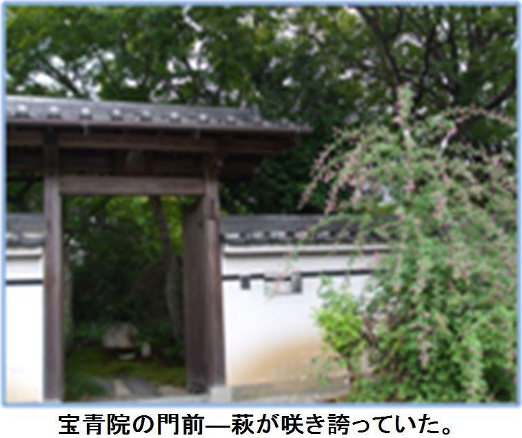 f0300125_15473148.jpg