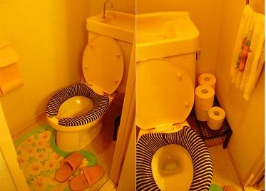 洗面所の下。_b0320131_04322419.jpg