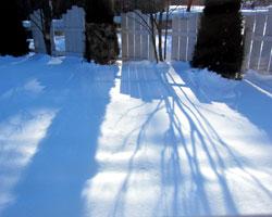 雪がまぶしい・・・_d0050155_9292842.jpg