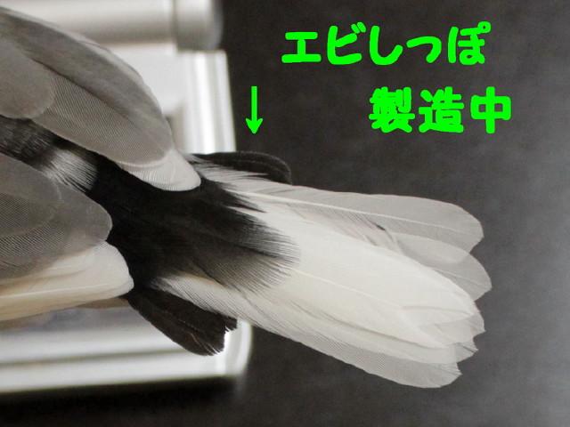 b0158061_20111736.jpg