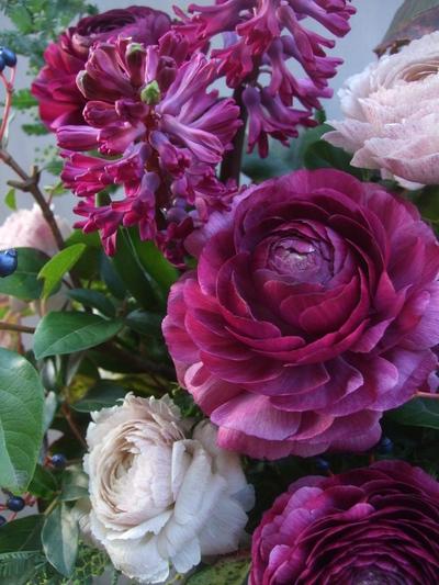 オークリーフ(紫色のラナンキュラス)_f0049672_12465258.jpg