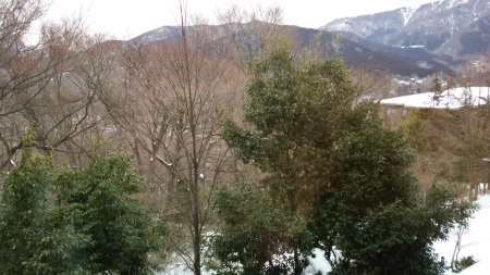 箱根強羅に来ています_a0107574_17101438.jpg