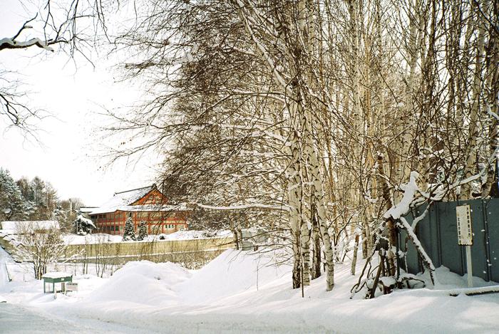 雪の白樺と寺院_c0182775_19274942.jpg