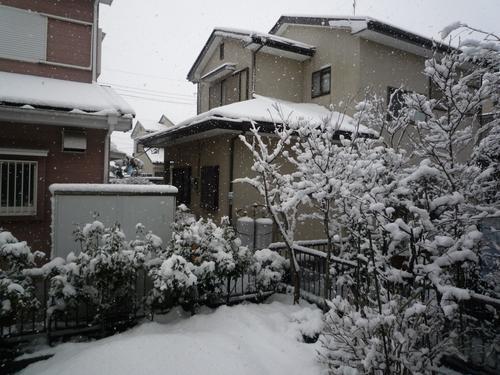 f0305275_201065.jpg