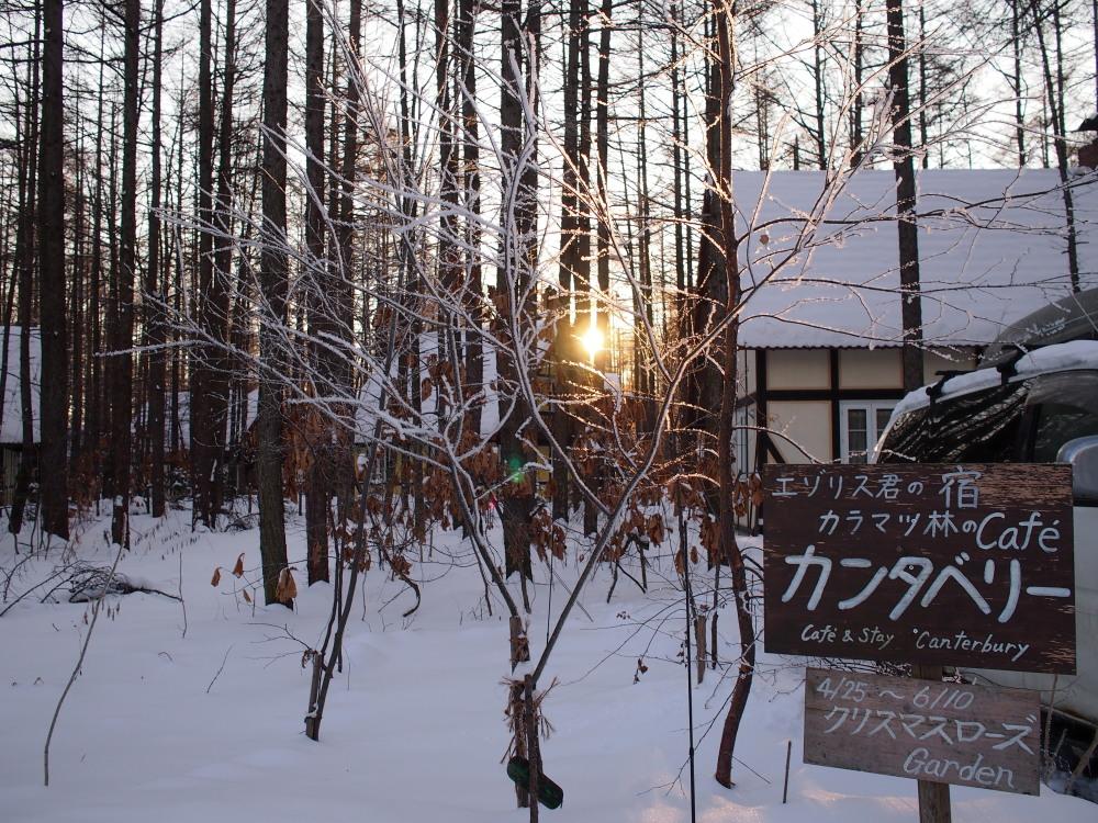 """今日はカンタベリーの木々にも""""霧氷""""が着きました。_f0276498_14334670.jpg"""