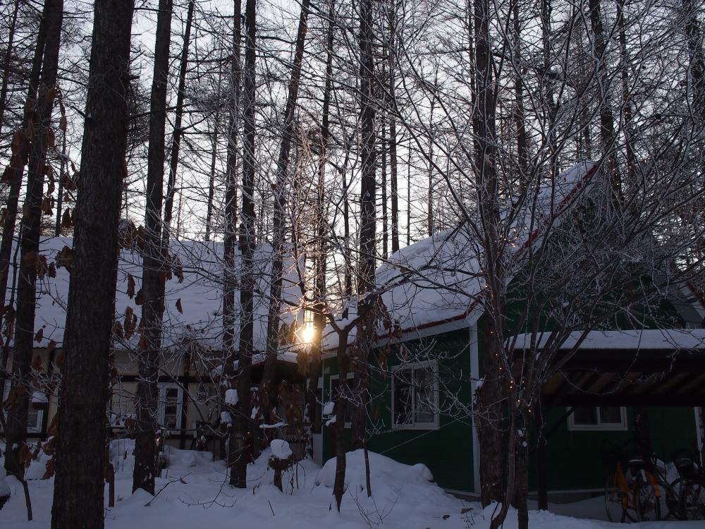 """今日はカンタベリーの木々にも""""霧氷""""が着きました。_f0276498_14361246.jpg"""