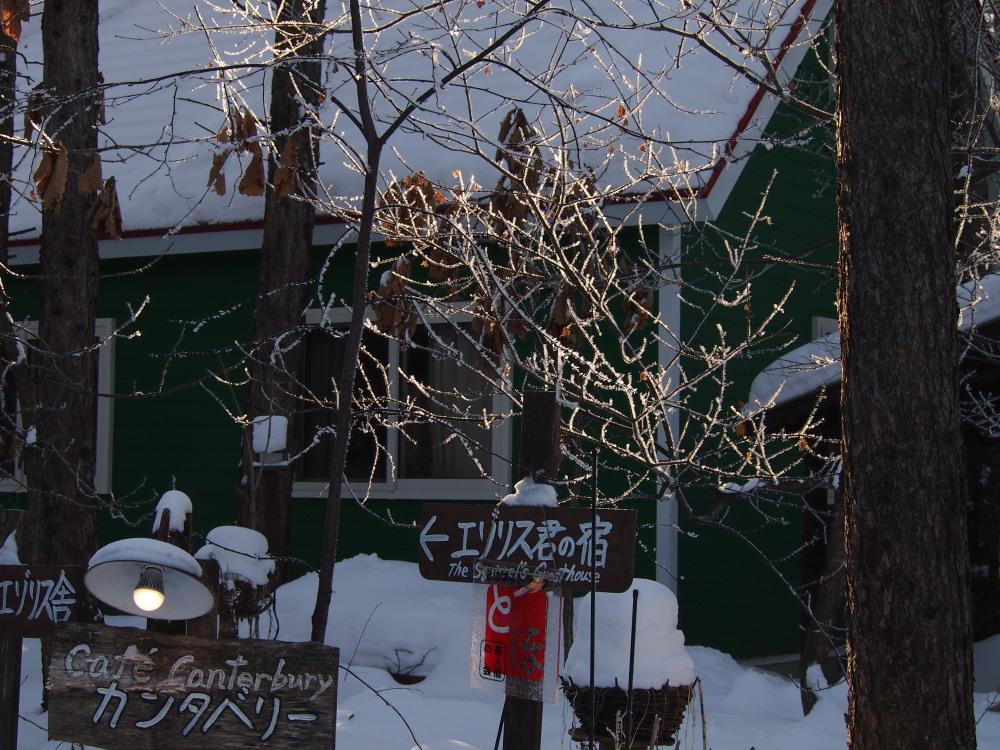 """今日はカンタベリーの木々にも""""霧氷""""が着きました。_f0276498_14373278.jpg"""