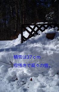 b0200310_6434858.jpg