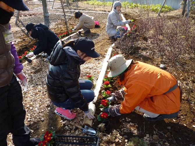 【1月22日ガーデンクラブの活動】_e0235911_16234635.jpg