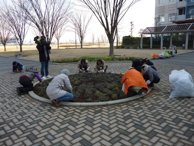 【1月22日ガーデンクラブの活動】_e0235911_16282241.jpg