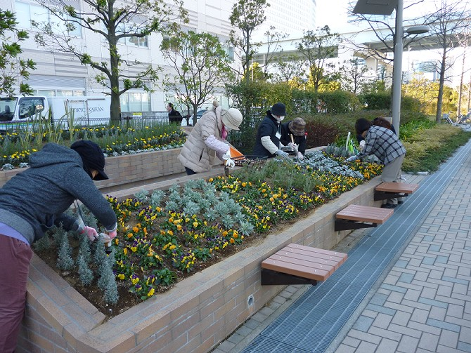 【1月29日ガーデンクラブの活動】_e0235911_16434368.jpg