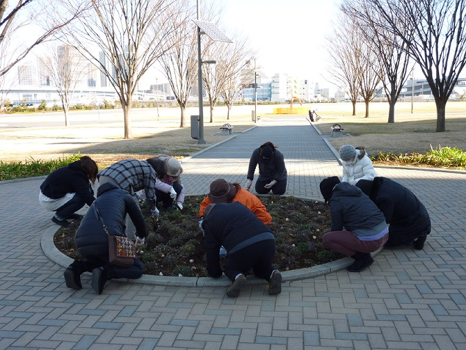 【1月29日ガーデンクラブの活動】_e0235911_1644832.jpg