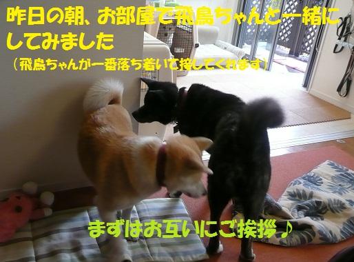 f0121712_024734.jpg
