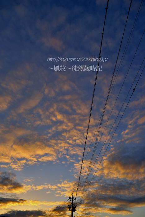 穏やかな冬日。_f0235723_19511715.jpg