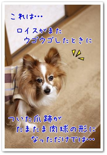 d0013149_21205797.jpg