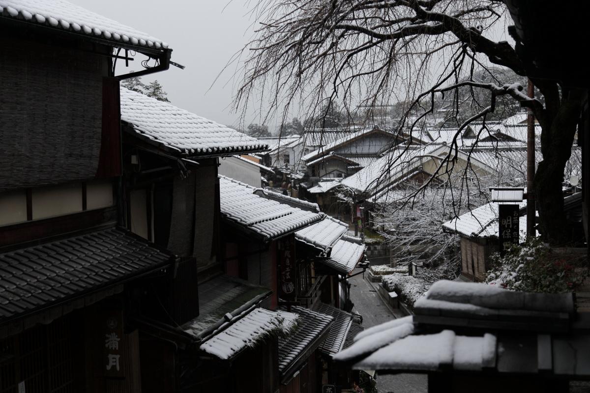 雪景色 2014 <東山>                        _f0021869_23325665.jpg