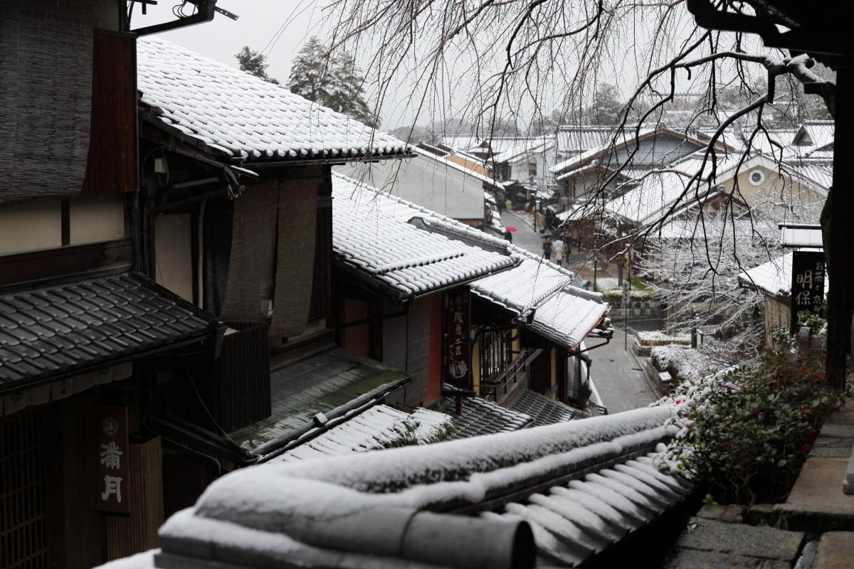 雪景色 2014 <東山>                        _f0021869_23331076.jpg