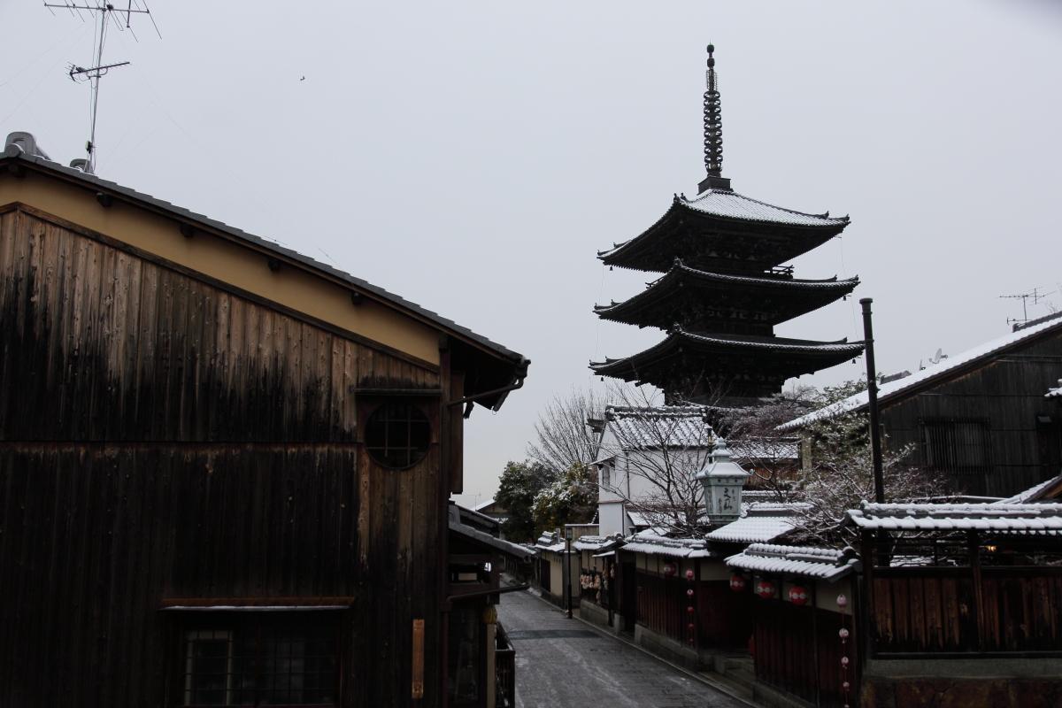 雪景色 2014 <東山>                        _f0021869_23335359.jpg