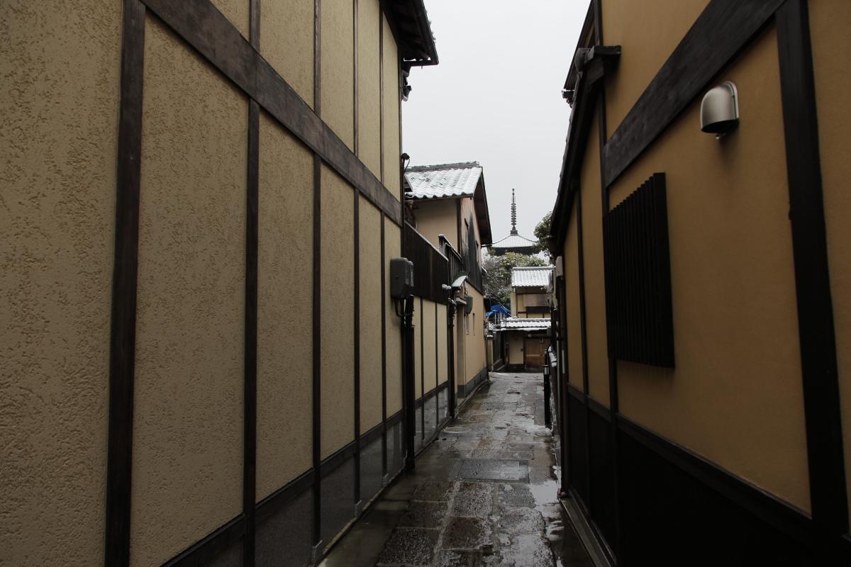 雪景色 2014 <東山>                        _f0021869_23352288.jpg