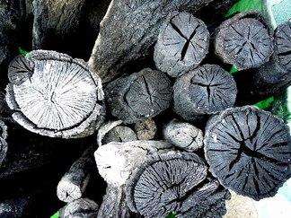 炭焼きを終えると春のスイッチが入る_b0102572_17425937.jpg