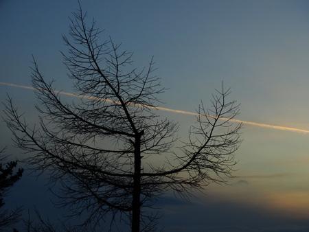 ひこーき雲_e0120896_733122.jpg