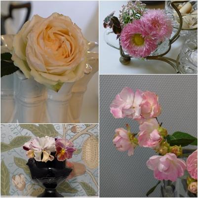 来客前の花摘み_c0198321_1264847.jpg