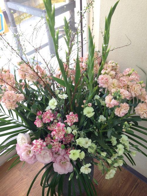 今週のお花とセール情報_a0200423_15374941.jpg
