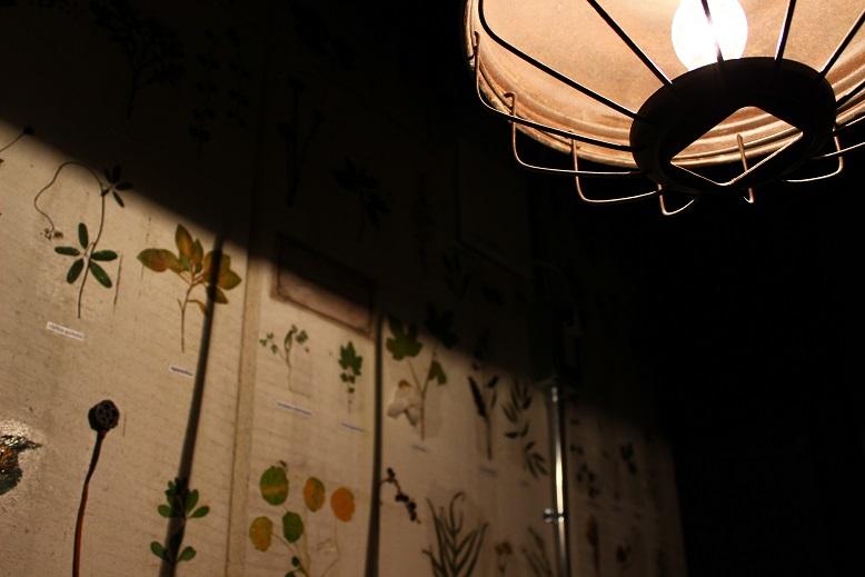 """CAFE \""""NOGISU\"""" ご紹介_f0191324_8354348.jpg"""