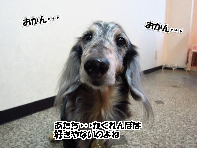 d0020869_13505015.jpg