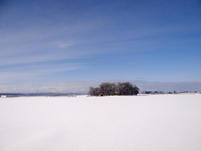 冬の岩木山ドライブ。遠くに観える権現崎や小さな丘の半鐘など♪_a0136293_16535088.jpg