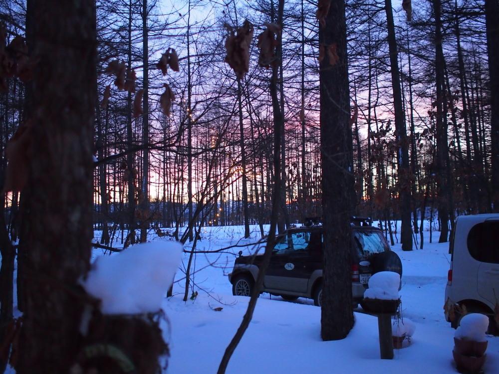 赤い夕陽に浮かび上がる防風林越しの日高山脈・・今日の夕暮れ_f0276498_13412637.jpg
