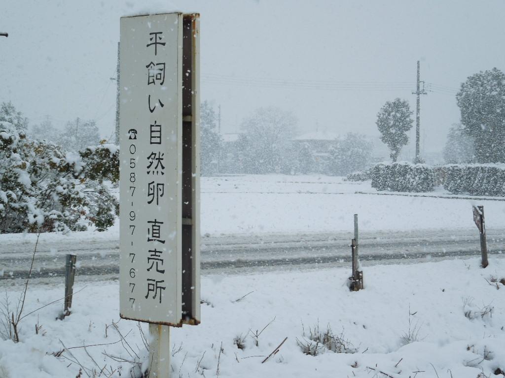 「大雪 Feb-2014」_a0120513_2164818.jpg
