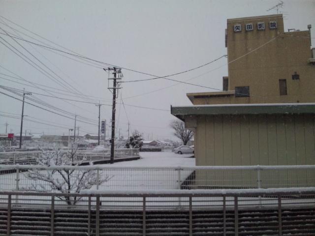 雪景色_d0163914_2020546.jpg
