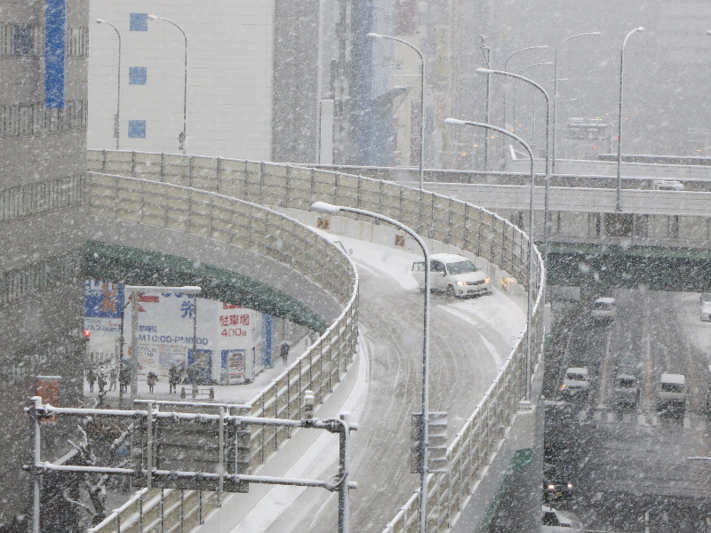名古屋の大雪_f0016320_1447057.jpg