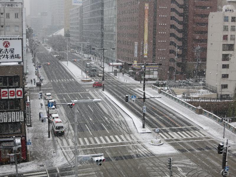 名古屋の大雪_f0016320_14471821.jpg