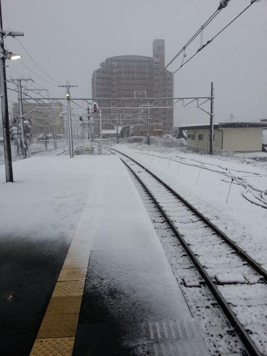 雪に負けない_b0226322_13323884.jpg