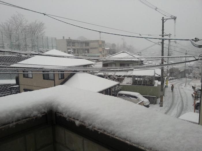 雪に負けない_b0226322_13323952.jpg