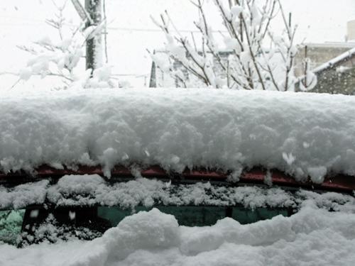 大雪_f0129726_22441918.jpg