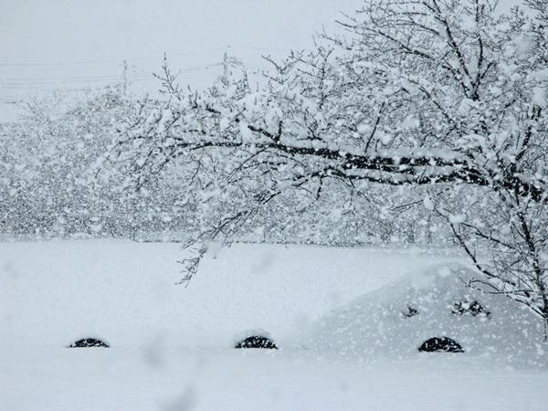 大雪_f0129726_22472583.jpg