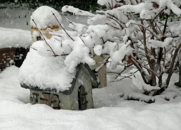 雪_f0129726_8243436.jpg