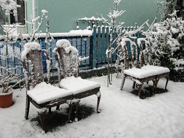 雪_f0129726_8253751.jpg